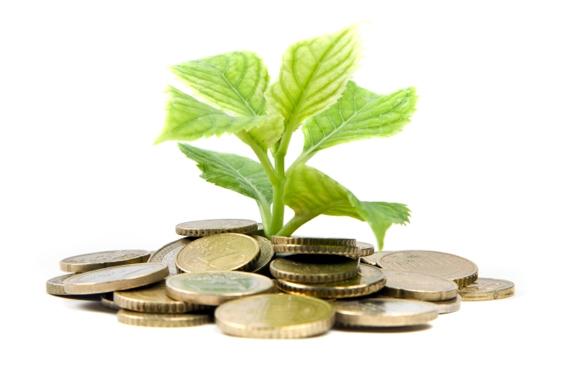 rising-the-tree-of-economic-development